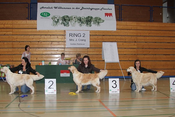 Höchstadt 2011, offene Klasse: v.l.n.r. Schwester Priscilla (V2), Lou (V3) und deren Mama Kimberly (V4)